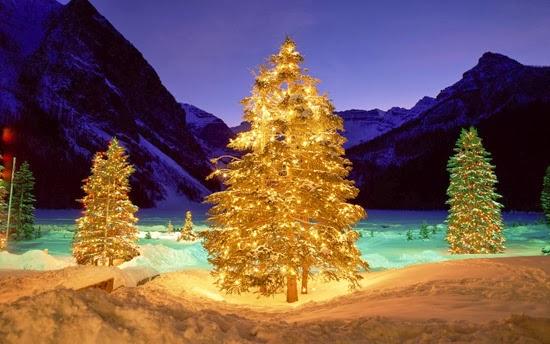 Christmas-tree-lighting-wallpaper