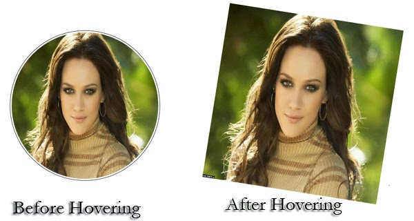 Photo-rotate-image-hover-effect-preview-html-css