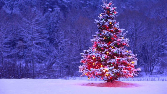 Christmas-tree-vertical-image-flip